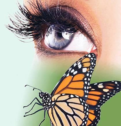 zdjecie przedstawia zdrowe oko oraz motyla